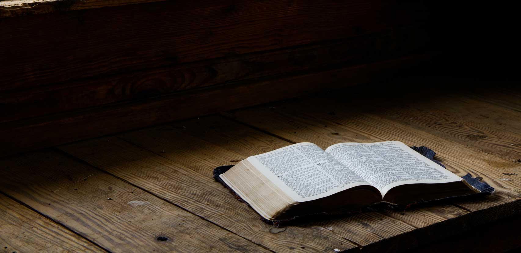 bible study courses
