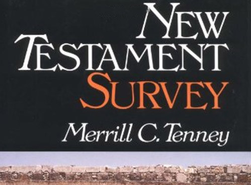 book cover new testament survey